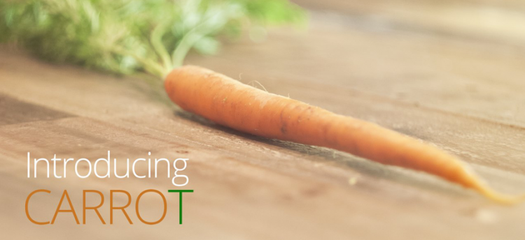 carrot-introduction