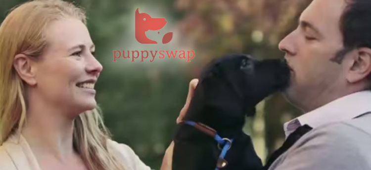 puppy-swap-teaser