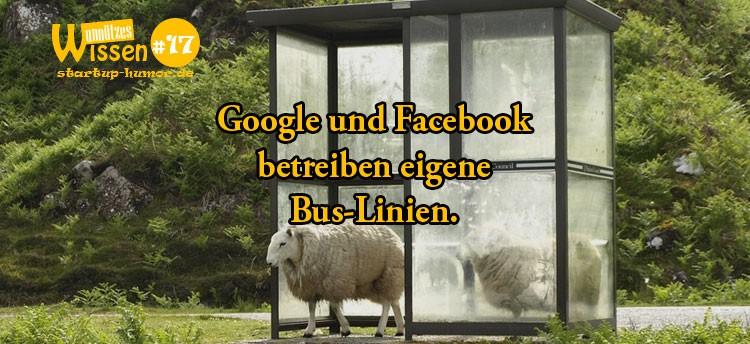 google-buslinien
