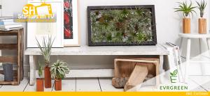 Evrgreen Pflanzen-Shop mit grünem Daumen