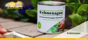 Schnexagon Anti-Schnecken-Schutzanstrich