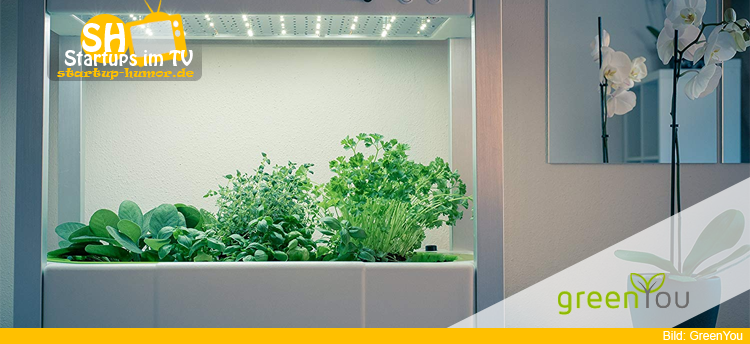 Indoor Gewächshaus Mit Beleuchtung : greenyou hol dir die kohle startup humor ~ Watch28wear.com Haus und Dekorationen